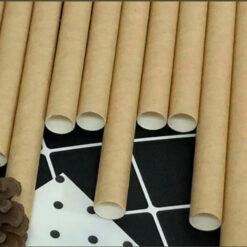 Hình ảnh ống hút giấy