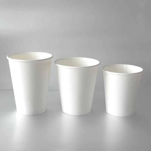Nguyên Phong cung cấp ly giấy chất lượng